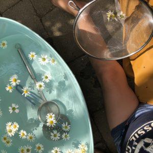 Hererderenvoksen, som hun kalder sig på Instagram, kommer med sine fem bedste bud på sommerlege.